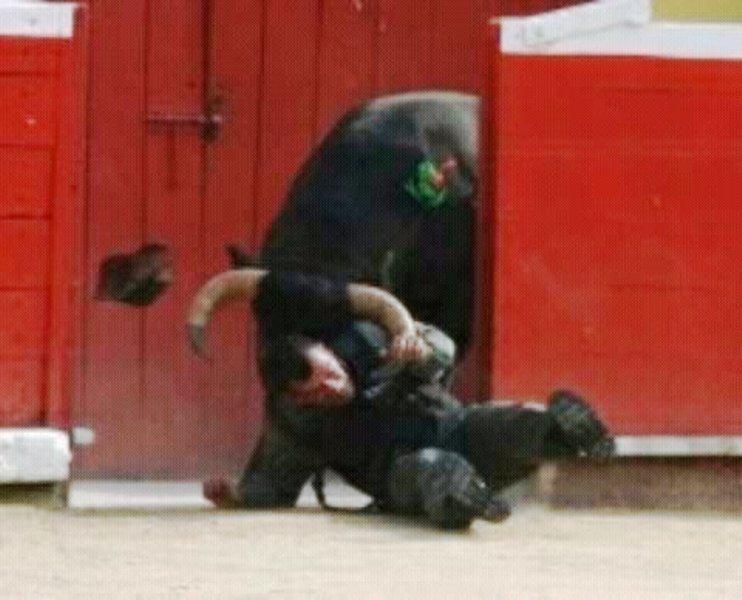 embestido por un toro