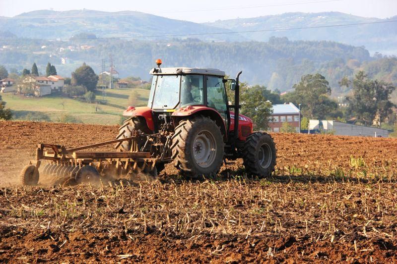 FEDEAGRO: En alto riesgo la producción agrícola de este Año