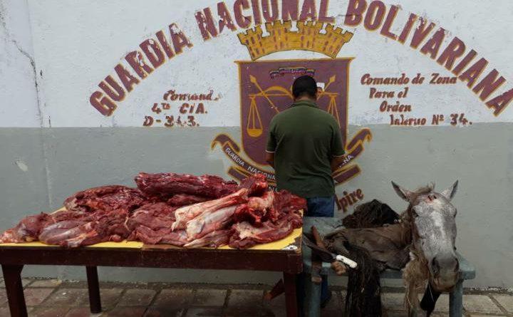 Detenido por vender carne de caballo