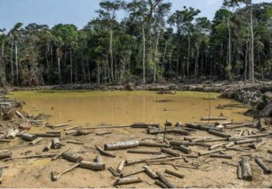 La Amazonía en franco peligro de sufrir  un daño irreversible.