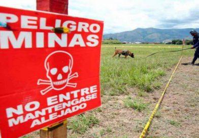 Las minas antipersonal en el Catatumbo continúan siendo un problema para Colombia